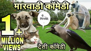 देसी जानवरों की मारवाड़ी काॅमेडी । Desi Animals Talking Funny Marwadi Comedy । fun with singh