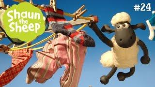 Ngày hội giặt giũ - Những Chú Cừu Thông Minh