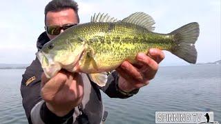 Bass Program Vol 3 (pesca al black bass)