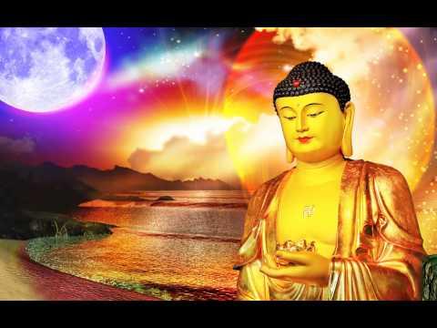 Diễn Đọc Kinh Xưng Tán Tịnh Độ Chư Phật Nhiếp Thọ