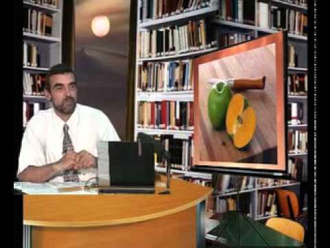 النظام الغذائي السليم الدكتور محمد فائد  الجزء الأول Music Videos