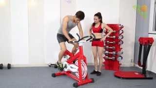 Xe đạp tập Elip Gym Max E199
