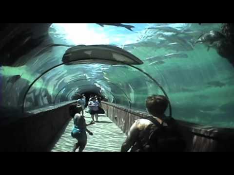 Hôtel Atlantis Bahamas - Destinations voyages autour du monde
