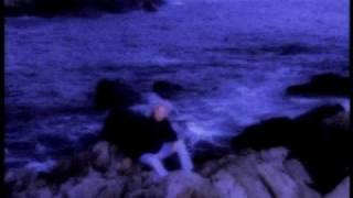 Watch T. Graham Brown Wine Into Water video