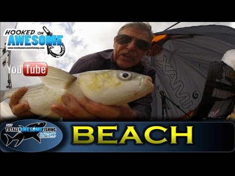 BEACH FISHING tips for BEGINNERS! with Graeme Pullen - TAFishing