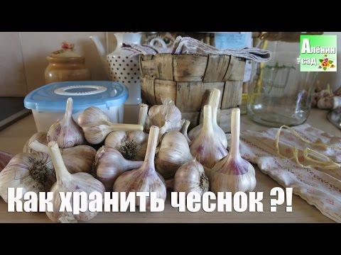 Как сохранить ЧЕСНОК. Все тайны! / All about garlic storage