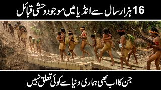 DOCUMENTARY ON INDIAN TRIBE ANDAMAN | Urdu Discovery