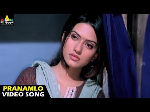 Andhrudu Video Songs - Pranamlo Pranamga video