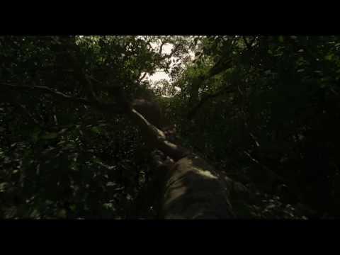 Mogli: O Menino Lobo - Trailer oficial thumbnail