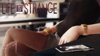 Life Is Strange: TEACHER