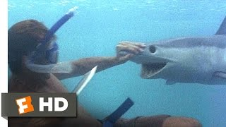 Video clip The Beach (3/5) Movie CLIP - A Shark Tale (2000) HD