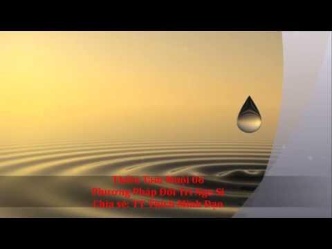Thiền Tam Muội 06 - Pháp Môn Đối Trị Ngu Si