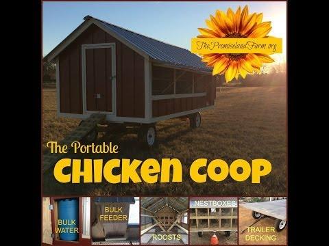 Chick Days Powers Backyard Farmers, Self-Reliance Movement (TSC