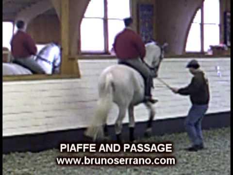 Passage / Piaffe Bruno Serrano