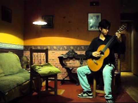 Libra Sonatina - Roland Dyens. Performing by Nahuel Romero