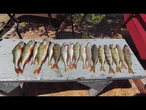 рыбалка на украине харьков