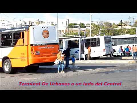 Queretaro Qro  Mexico Central De Autobuses Adentro 2014