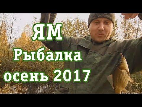 ЯМ. Рыбалка| осень 2017|