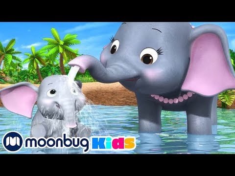 5 Elefanten waschen sich | Kinderlieder und Cartoons | Little Baby Bum | Moonbug Kids Deutsch