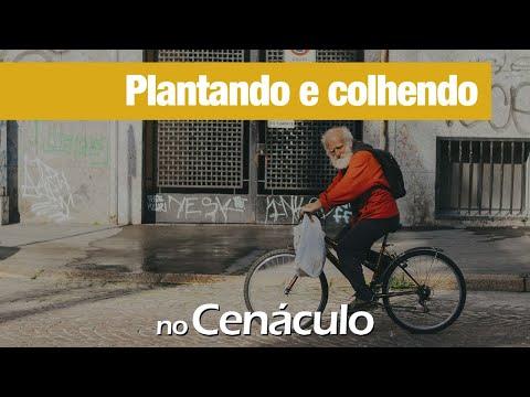 Plantando e colhendo | no Cenáculo 15/01/2021