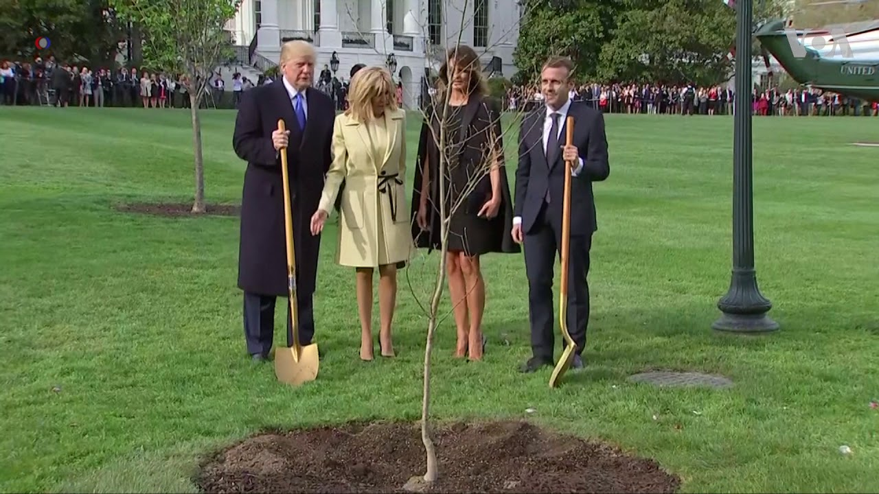 White House Mystery: Where is Trump-Macron Oak Tree?