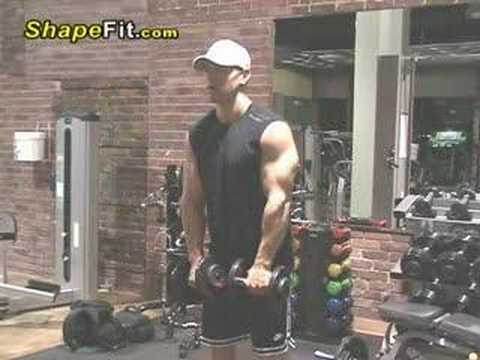 Shoulder Exercises - Standing Dumbbell Side Lateral Raises Image 1