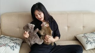 Monkey Baby Nui | NUI doesn't let mother sleep, NUI and her mother are very happy to fight