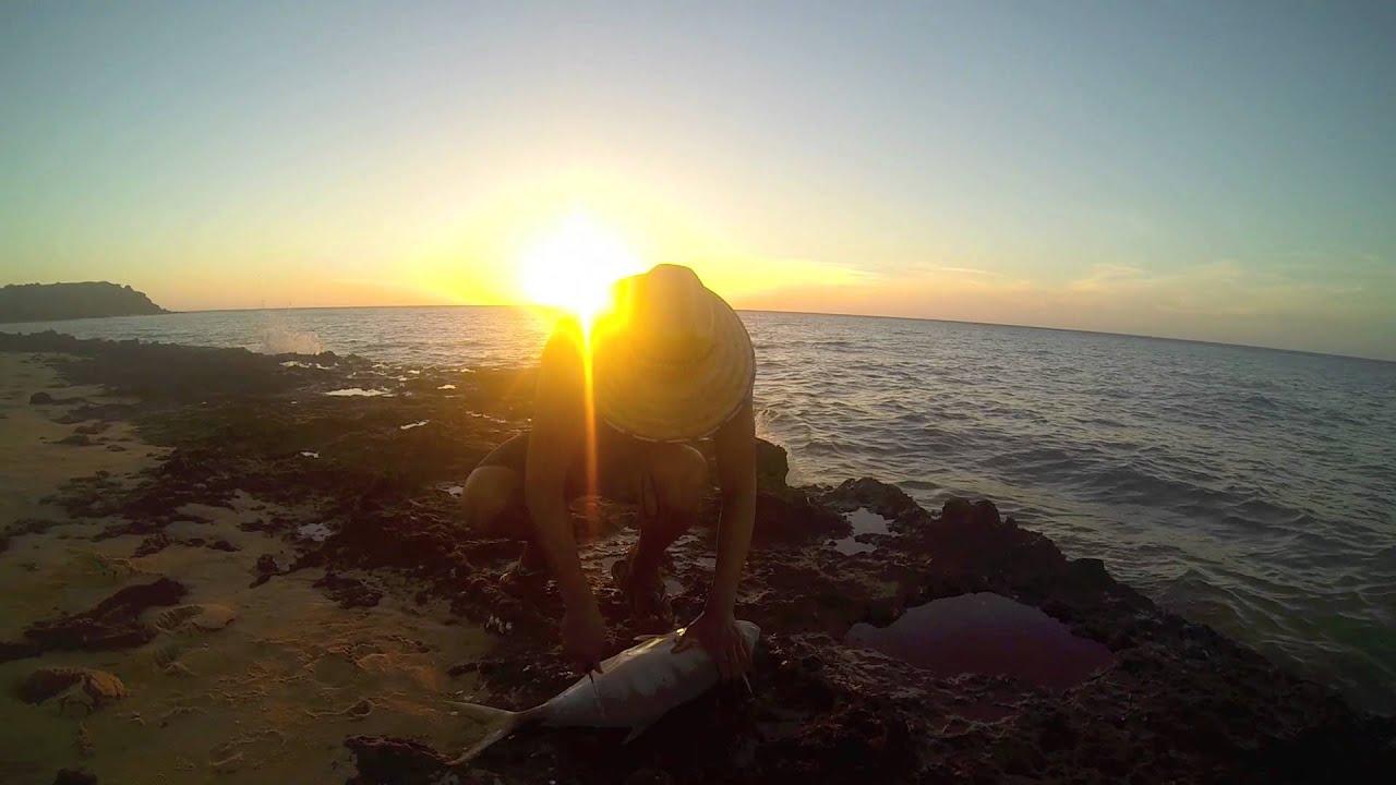 Shark Bay Camping Shark Bay '14 4wding