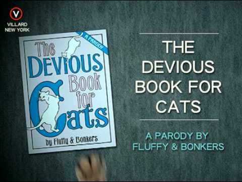 The Devious Book for Cats - SECRET MISSION