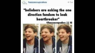 One Direction Funny Pictures With Captions