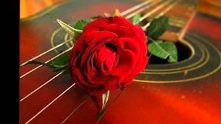 Лоя-Розы темно алые!!!