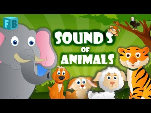 Sounds Of Animals Song | Children Nursery Rhymes video