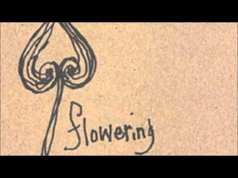 Sean Hayes - Flowering Spade