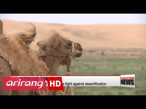 Arirang's documentary 'Making Mongolia's Moments' spotlights 26 years of Korea-Mongolia relations