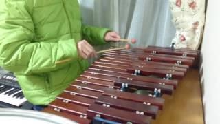 情熱大陸【木琴/器楽合奏】
