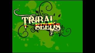 Watch Tribal Seeds Rasta Refuse It video