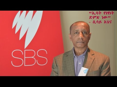 Interview With Journalist Sisay Agena -  SBS Amharic