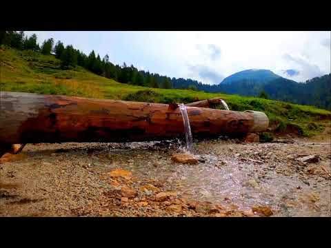 Calming Wood Stream. Relaxing Water Sounds. (10 hours) White Noise for sleep.