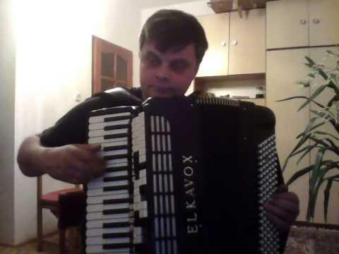 Kukówka - Akordeon