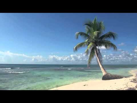 Jimmy Buffett - Duke