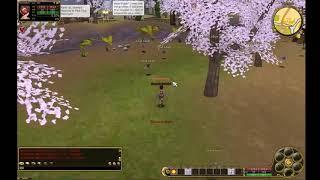 [Royal FlyFF] Jester AoE Skill - Da Bomb