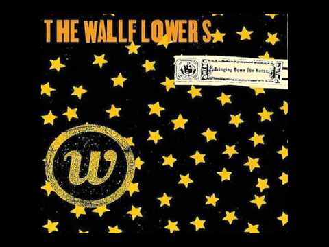 Wallflowers - Invisible City