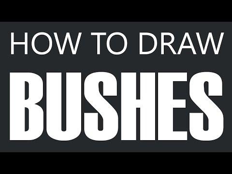 Bush Drawings How to Draw a Bush Yard
