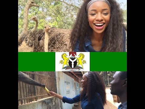 Nigeria Travel Vlog #8| Feeding monkeys, hanging out with Lions| My day at the zoo in the village|