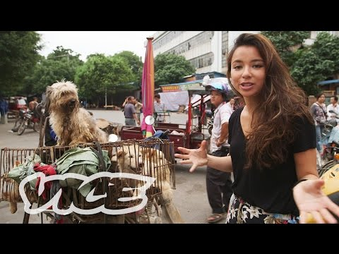 Dining On Dogs In Yulin: Vice Reports (full Length) video
