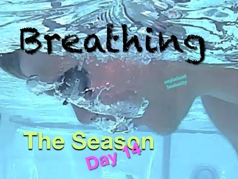 Breathing Swim Lesson 'the Season Day 14' Helpful Tips On How To Swim video