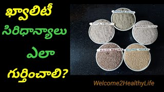 Millet|How to Identify  Quality of Millets| Telugu
