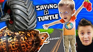 WE SAVED AN INJURED TURTLE!! FUNnel Vision Pet Smart Habitat Vlog