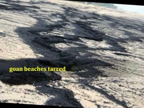 presentation,goa,calangute beach affected ,environmental destruction,pollution