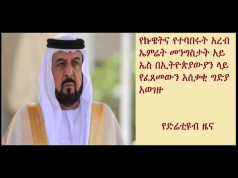 DireTube News - Kuwait and UAE condemn ISIS beheading Ethiopians